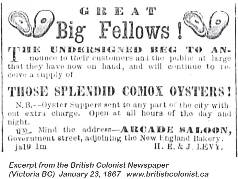 1867 01 23 Comox Oysters excerpt