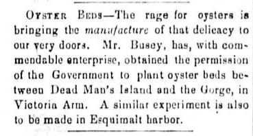 mr busey in times colonist