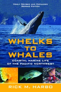 whelks to whales_final cover_CMYK